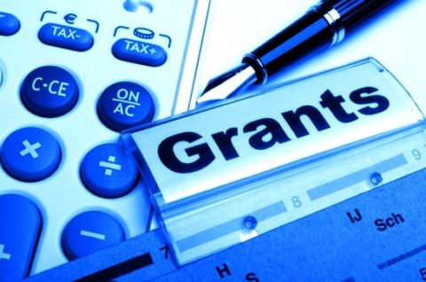 GOVERNMENT GRANTS CLAIMS AND SUBSIDIES