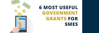 6 Government Grants